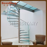 Indoor / Outdoor Metal Stainless Steel Spiral Wood Staircase (SJ-S039)