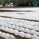 China-Fabrik Spunbond des nichtgewebten Gewebes für die Landwirtschaft