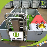 Сделано в гальванизированном Китаем порося цене клети для фермы свиньи