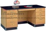 専門の生物学の実験室ベンチの家具は教室のためにセットした