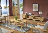 Beiläufiges Wohnzimmer mit kleinem diagonalem Kaffeetische