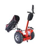 Ecorider 4000W 전기 각자 판매를 위한 균형을 잡는 스쿠터 골프 스쿠터