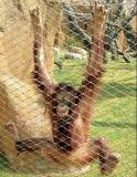 동물원 메시 침팬지 울안 담