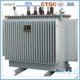 transformateur amorphe triphasé immergé dans l'huile d'alliage de 100kVA 10kv/transformateur de distribution