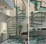 Escadaria espiral de vidro impressionante/escadaria espiral de vidro moderna do aço inoxidável com o passo do vidro geado e os trilhos de Rod