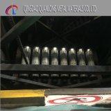 A bobina colorida impressa/cor revestiu a bobina de aço/bobina de aço Prepainted