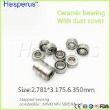 Серия Hesperus подшипника для быстро вращающегося вала 2.78mm зубоврачебных подшипников Handpiece зубоврачебная