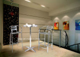 Vector y sillas al aire libre (LL-WST007) del acero inoxidable de la alta calidad