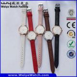 Orologio casuale delle signore del quarzo della cinghia di cuoio del ODM (Wy-070C)