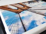 3D Digital T-shirt Cotton textile polyester imprimante avec ce