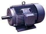 Y-Reihen-asynchrone dreiphasigmotoren