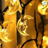 LEDの太陽海星ストリングライト