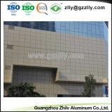 Kundenspezifische Aluminiumzwischenwand-Decke für Einkaufszentrum