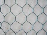 Горячий DIP гальванизированный или 60X80 PVC Coated шестиугольная ячеистая сеть (цена по прейскуранту завода-изготовителя)