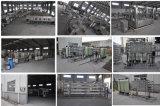 5000L/H天然水のプラント機械装置