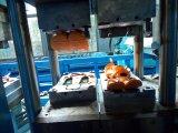 As sapatas de EVA Crocs automática chinelos Máquina de Moldagem por Injeção