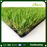 景色の草のカーペットの自然な緑の庭の芝生