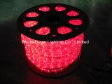 5 철사 LED 편평한 밧줄 빛, 밧줄 빛, 지구 빛