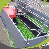 Maiale di figliata personalizzato della cassa che alza la strumentazione dell'azienda agricola da vendere