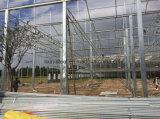 최신 판매 Prefabricated 강철 구조물 프레임 녹색 집