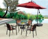 옥외 /Rattan/정원은/안뜰/호텔 가구 등나무 의자 & 테이블 놓았다 (HS 1023C & HS 6076DT)