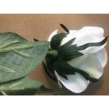 Silk Rosen-künstliche Blumen-Dekoration-Hochzeitsfest