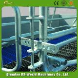 Schwein-züchtend Geräten-Sau-Feder-werfende Feder für Verkaufs-werfenden Rahmen