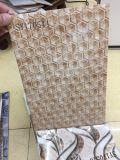 Mattonelle di ceramica 2017 dell'Iran della stampa del getto di inchiostro dell'ingobbio per le pareti