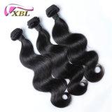 非化学一等級の完全なクチクラ100%のブラジル人の毛