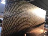 15mm Precio reducido núcleo de madera contrachapada de Polar película enfrenta
