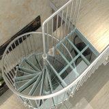 Escalera espiral para el diseño de cristal del nuevo espiral del diseño de la casa