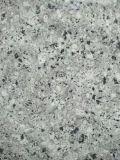 Perla della Cina/lastra blu del granito per la cucina/stanza da bagno/parete/pavimento
