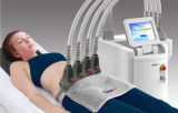 Nichtinvasiver Dioden-Laser-Skulptur-Karosserien-Former, der Maschine für permanente fette Zellen-Verkleinerung abnimmt