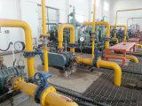 1500nm3/Hr de Installatie van de Bevordering van het biogas