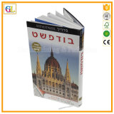 Impressão feita sob encomenda profissional do livro do Hardcover (OEM-GL044)