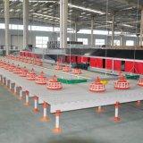 Conjunto completo de capoeira de equipamentos agrícolas para a produção de frango