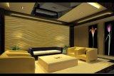 2440X1220X (6-25) mm Two-Color Slim panneau artistique en bois de grain