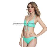 De sexy Tweedelige Essentiële Bikini van de Kop Moluld