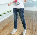 Estilo de moda de compras on-line de mola cabritos jovens raparigas Perneiras Jeans