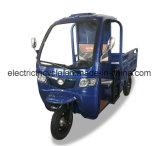 Ladung Trike Scheinwerfer des Rad-60V1000W 3 elektrischer, 500kg Laden 50ah E-Dreirad
