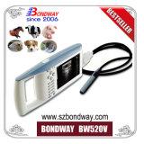 Handtierarzt-Ultraschall-Scan-Maschine, Mastvieh, Tagebuch-Vieh, Kuh-Ultraschall