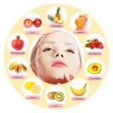 전기 자동적인 과일 가면 기계 DIY 자연적인 과일 야채 우유 얼굴 Masker 제작자