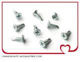 Aço inoxidável 304 316 410 parafusos Drilling St2.9 do auto principal liso a St6.3