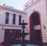 Hotel de lujo, la escultura de tallado de piedra de Agua Fuente de mármol para el parque de la ciudad