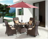 옥외 /Rattan/정원은/안뜰/호텔 가구 등나무 의자 & 테이블 놓았다 (HS 1629LC & 7616DT)