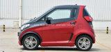 2 автомобиля мест людей новых миниых малых китайских электрических