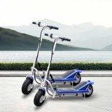 Marcação filhos jovens favoráveis Mini Scooter Eléctrico (DR24300)
