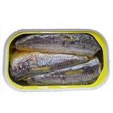 Les poissons en boîte aseptiques sains ont mis en boîte le légume en boîte de nourriture en boîte de sauce tomate
