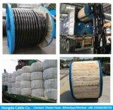 Cable de Rvfv Arvfv del cable de Cu/XLPE/PVC/Sta/PVC 3X120+70 mm2 U-1000