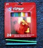 Color Pencil (Cp-12)